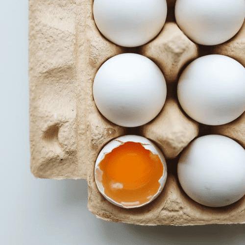 Tojás és tojáskészítmények